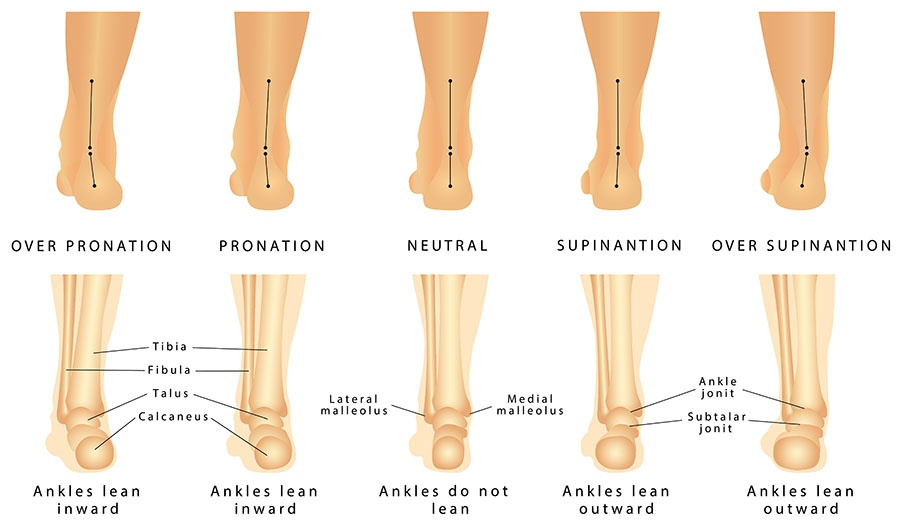 Pronation supination view